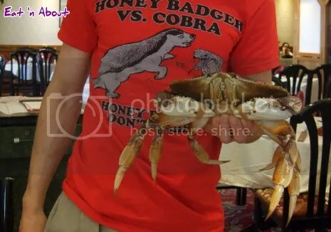 Top Cantonese: Honey badger vs. cobra vs. crab