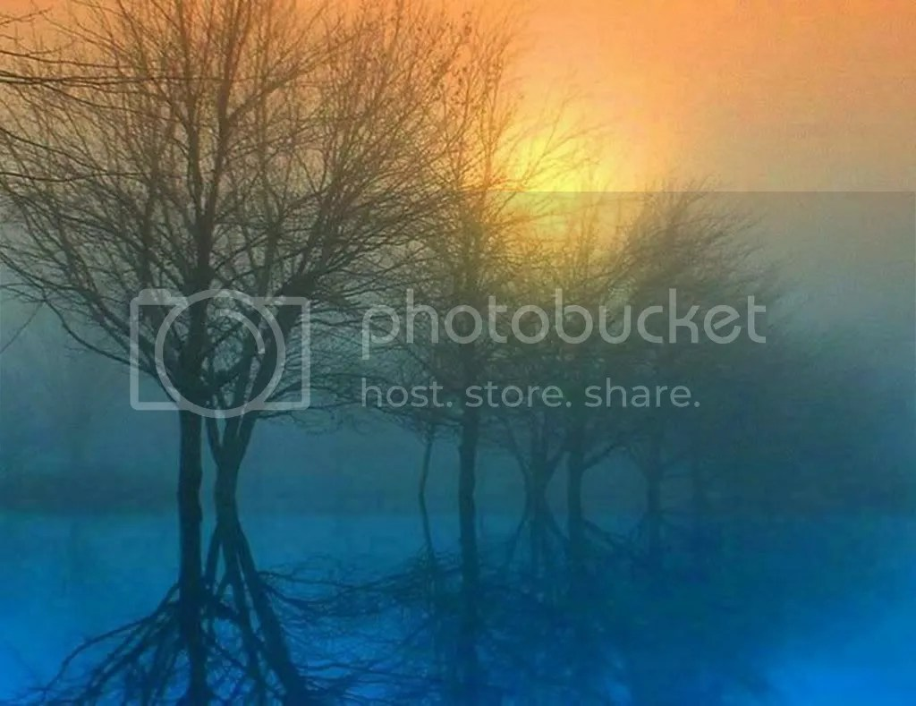 mist Pictures, Images and Photos