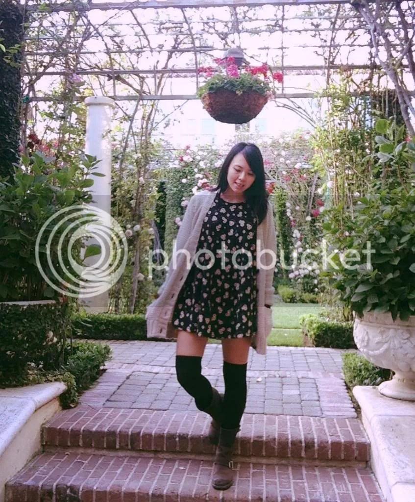 photo photo21-1.jpg