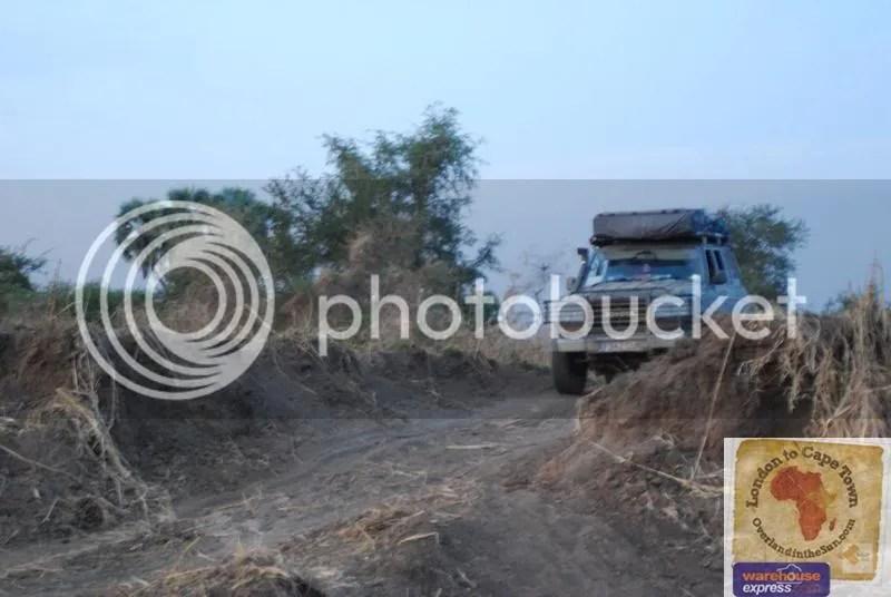 Lesser spotted landcruiser