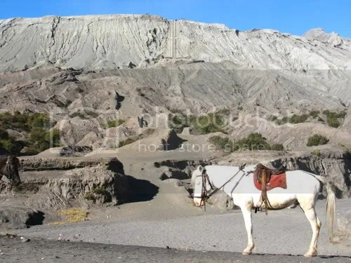 At the foot of the volcano; you can choose to walk up, or ride the horse all the way to the stairs. I rode.