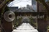 photo DSC_2783.jpg