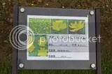 photo DSC_9907.jpg