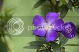 photo DSC_2403.jpg
