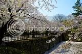 photo DSC_5642.jpg