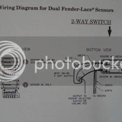 Lace Sensor Wiring Diagram Strat Oil Water Separator Tele Fender Diagrams - Modern Design Of