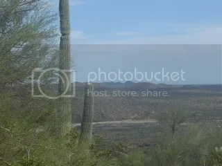 Hassayampa River Valley, above Rincon Road - 2