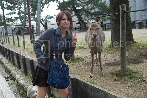 BP with Deer