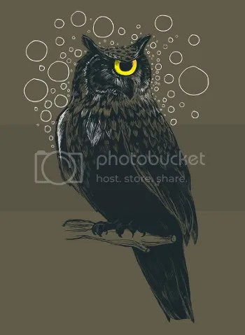 Old & Wise, Tilteed, owl