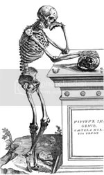 De Humani Corporis Fabrica 1542: right side of articulated skeleton, p. 164