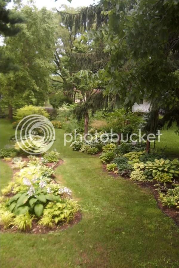 hosta garden pic of day 3