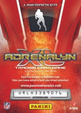 2010 Panini Adrenalyn XL Football Card Back
