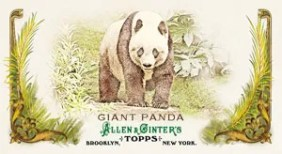 2011 Allen & Ginter Giant Panda Animals in Peril
