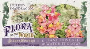 2011 Allen & Ginter Flora of the World Spurred Snapdragon