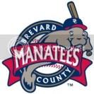 Brevard County Manatees Team Logo