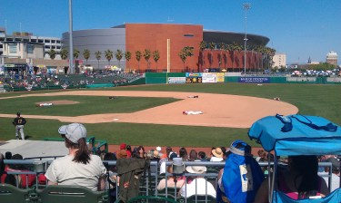 Stockton Ports Players Bee Swarm At Game