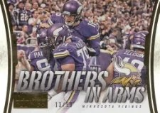2014 Panini Hot Rookies Brothers IN Arms Gold Vikings