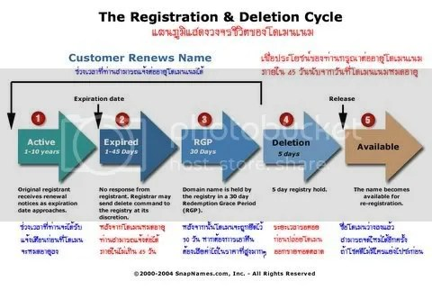 Domain Name Life Cycle