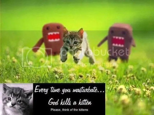 God kills a kitten Pictures, Images and Photos