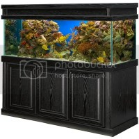 180 gallon tank, stand, and canopy for sale - Reef Central ...