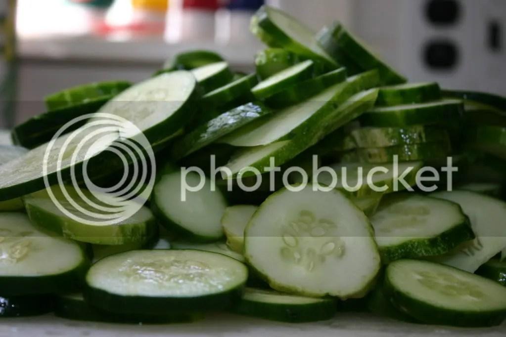Pile o' cucumbers