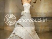 Pronovias Famous Wedding Dress
