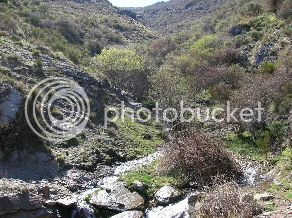Uno de los múltiples arroyos que se cruzan