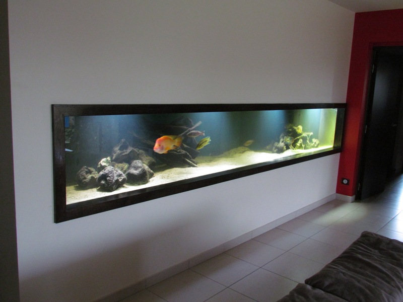 Aquarium encastrable dans un mur prix  Construction maison bton arm