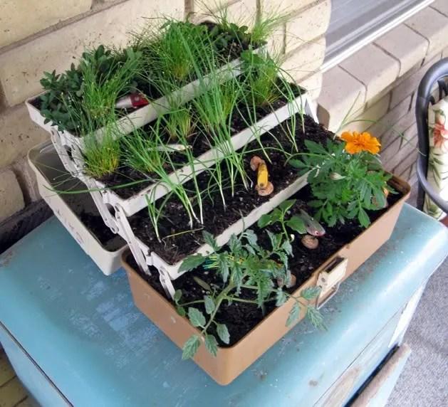 17 Best 1000 Ideas About Box Garden On Pinterest Raised Garden