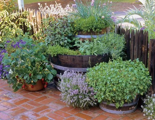 35 Herb Container Gardens Pots & Planters Saturday Inspiration