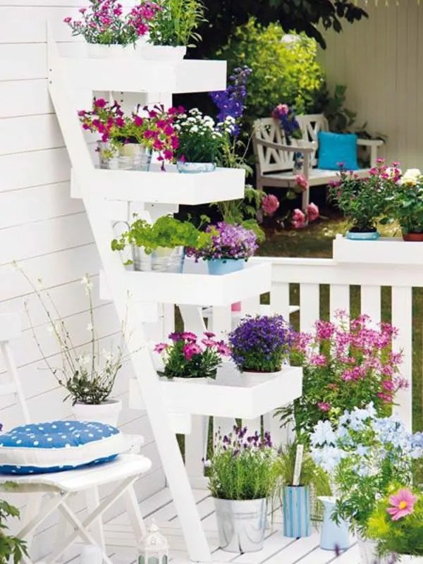 How To Beautify Your Balcony With Plants Ferns N Petals