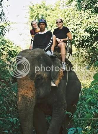 ElephantRide.jpg