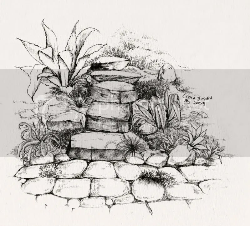 giardino roccioso mediterraneo