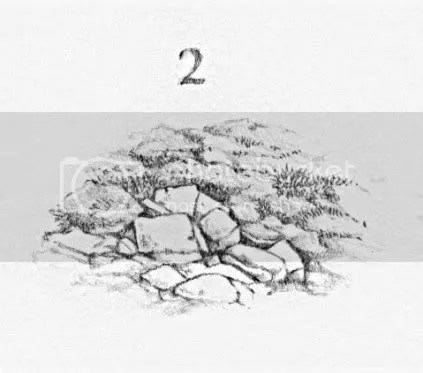 giardino roccioso 2