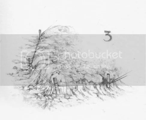 giardino roccioso 3