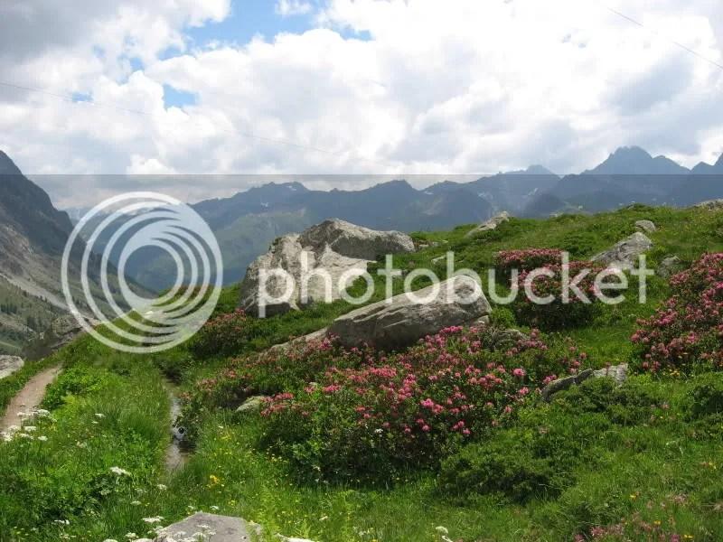 Giardino roccioso alpino, Lukus e Mex