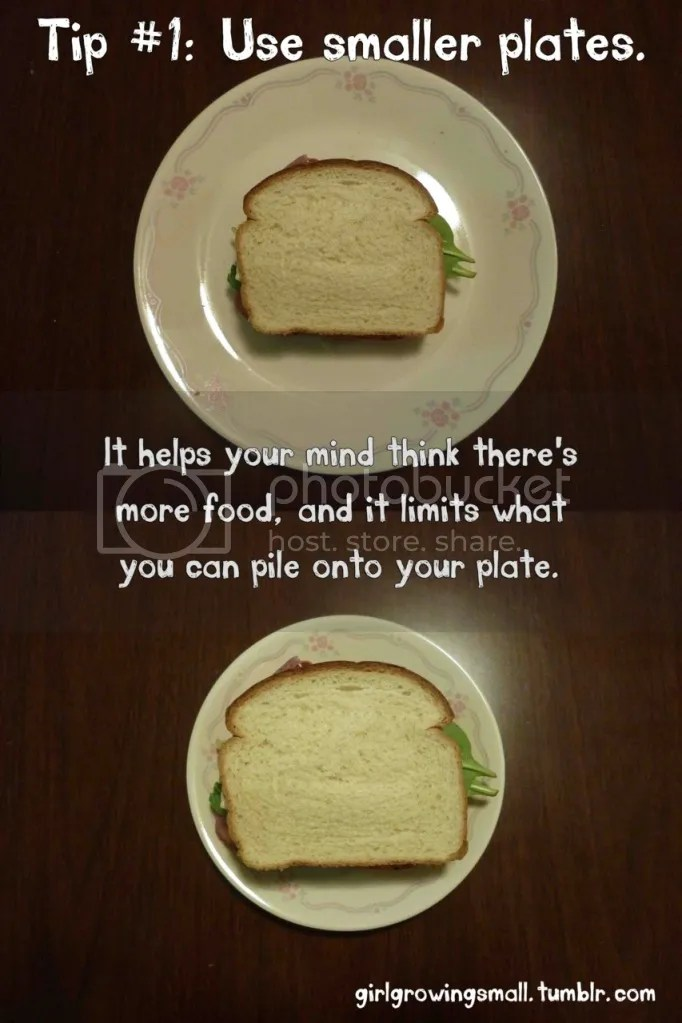 portion Distortion -  smaller plate illusion