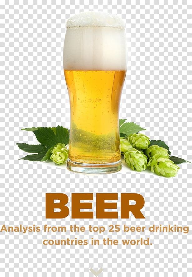 Beer Brewing Grains & Malts Nutrition facts label Food ...