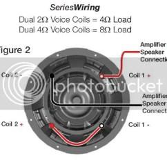 L7 Wiring Diagram Spongy Bone Kicker Comp R 12 31 Images Series Diagrams Instruction At