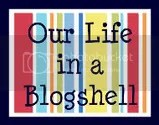 Our Life in a Blogshell