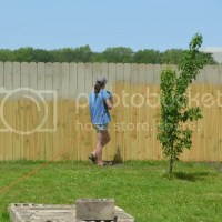 Painting the Back Fence