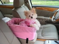 Pet Dog Luxury Console Lookout Carrier Car Seat 12 lbs