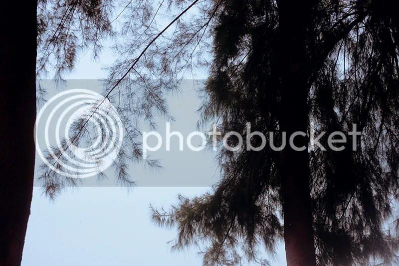 photo IMG_0759.jpg