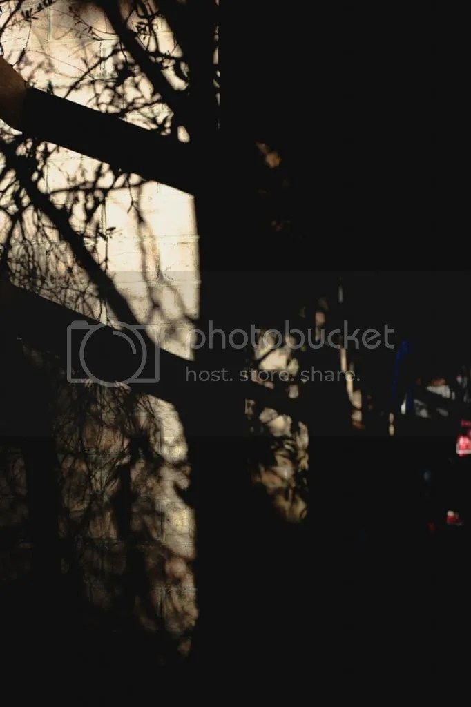 photo IMG_1854.jpg