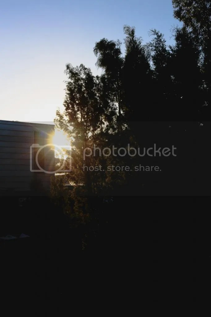 photo IMG_1859.jpg