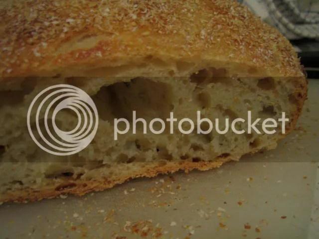 no-knead bread crumb