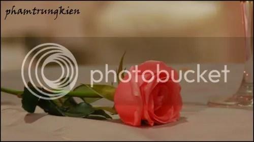 lip rose