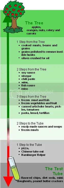 The Tree to Test Tube Continuum