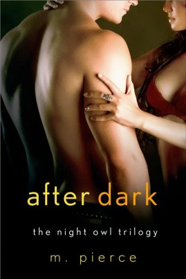photo AFTERDARK_CoverEbook.jpg