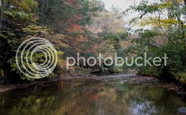 Trout Fishing Helton Creek NC